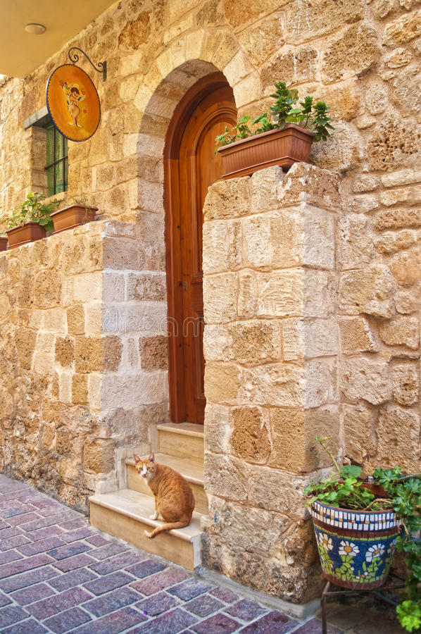 Kattenzitting bij voordeur van oud Europees huis stock foto's