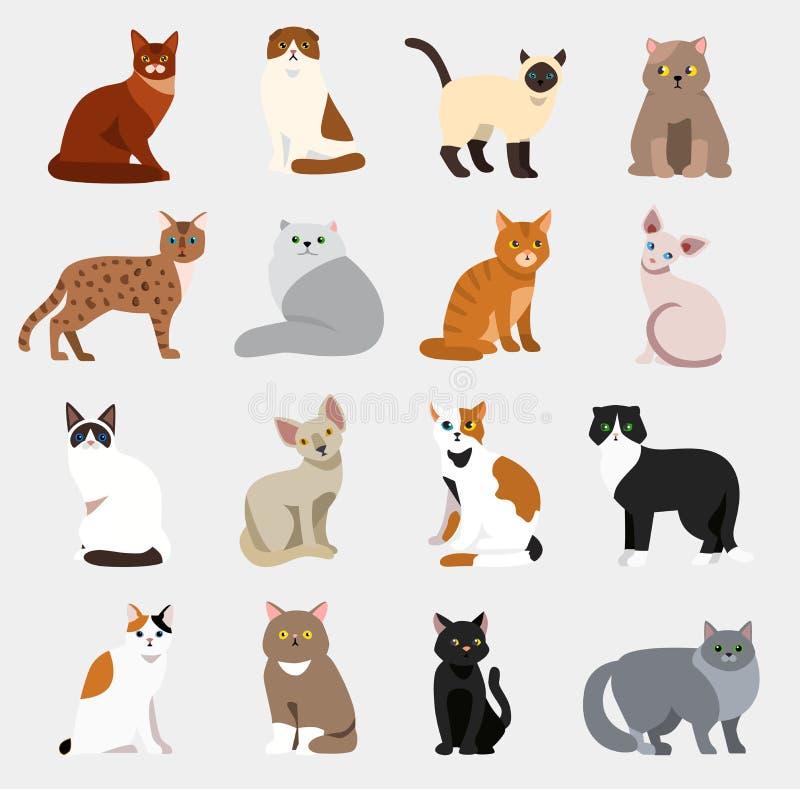 Katter för gullig för älsklings- djur för kattavel olika för uppsättning för vektor för illustration för djur tecknad film för sy stock illustrationer