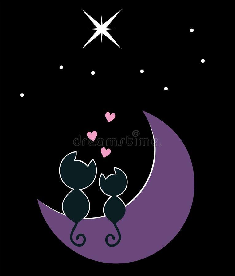 Katter Moon Två Arkivfoto