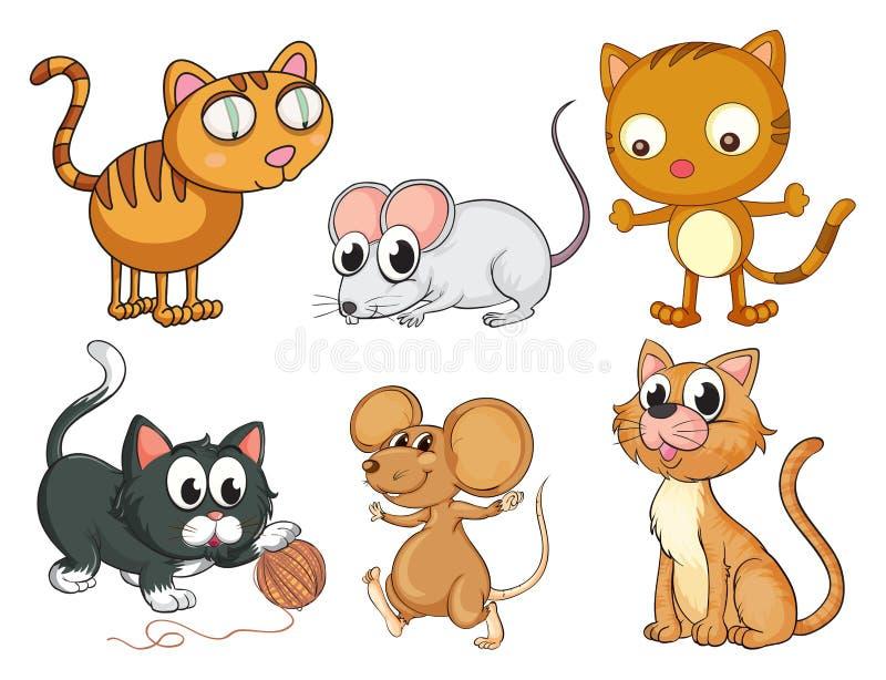 Katter och möss vektor illustrationer