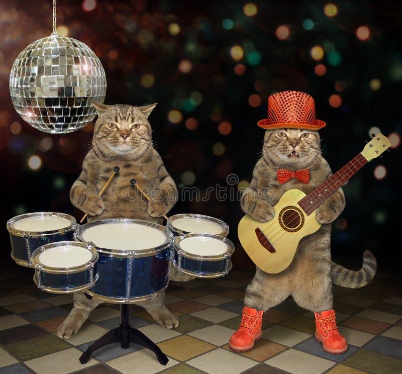 Katter utför i en nattklubb 2 fotografering för bildbyråer