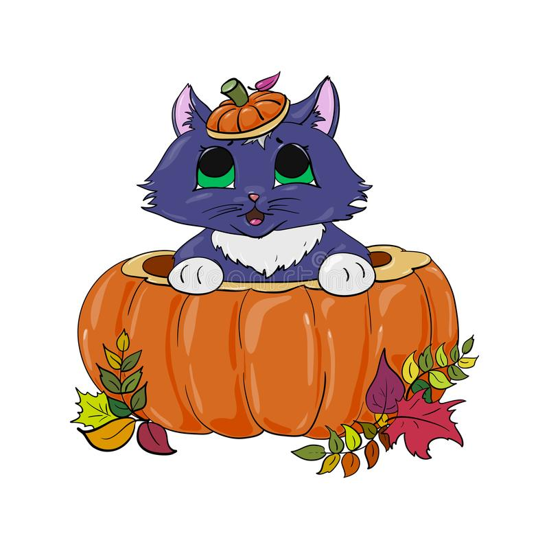 Kattunge i en pumpahalloween illustration royaltyfria bilder