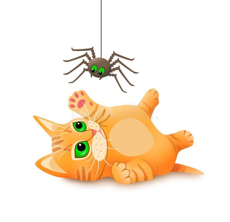 Kattunge som spelar med spindeln royaltyfri fotografi