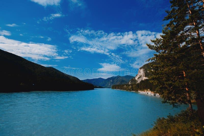 Katun Biryuzovaya, синь и река бирюзы в России стоковое изображение rf