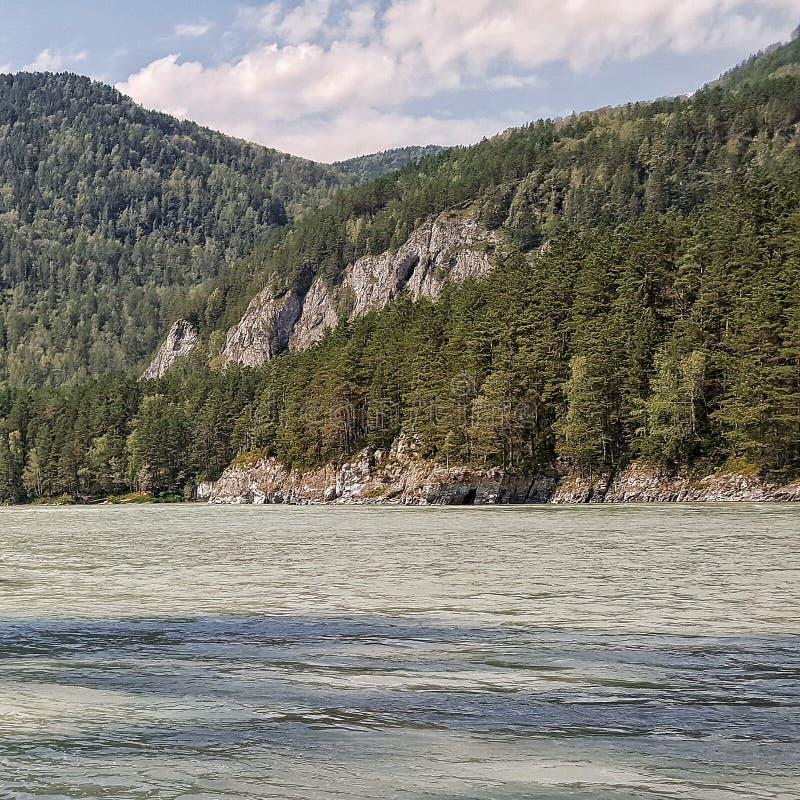 阿尔泰山的Katun河 免版税库存图片