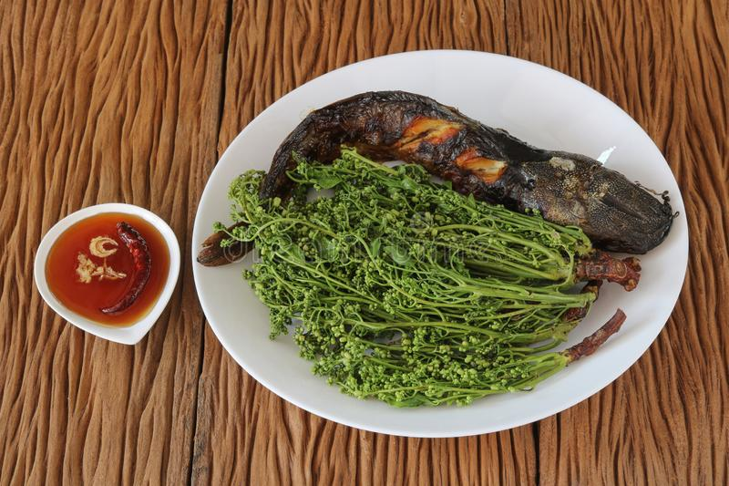 Katvis met gekookt neem blad wordt geroosterd dat stock fotografie