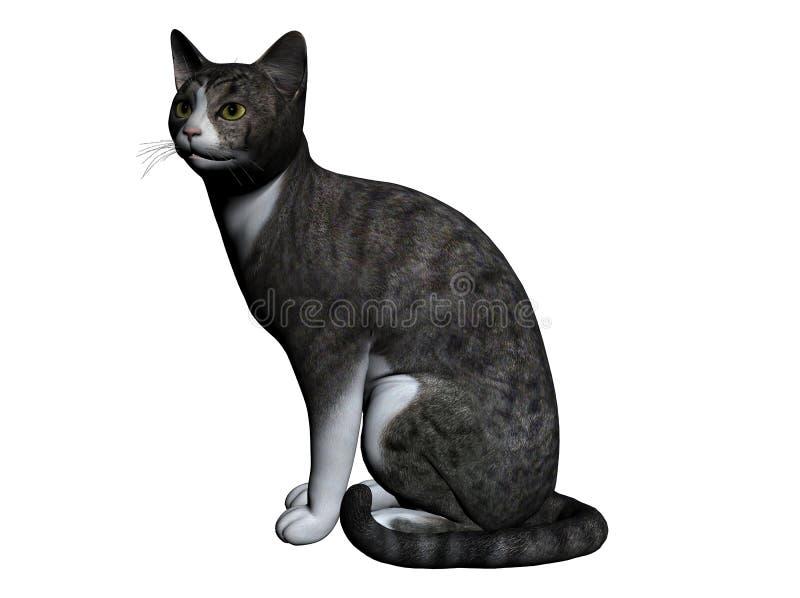 Katze vektor abbildung
