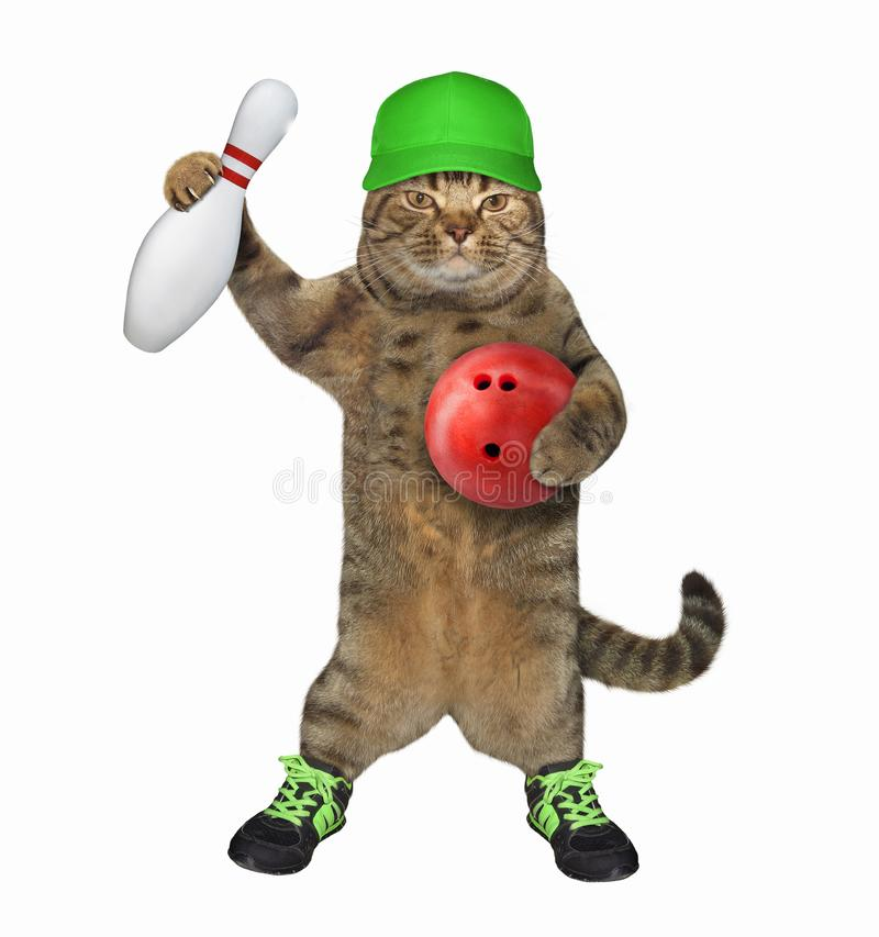 Katze in den Schuhen mit einer Bowlingkugel 3 stockbild