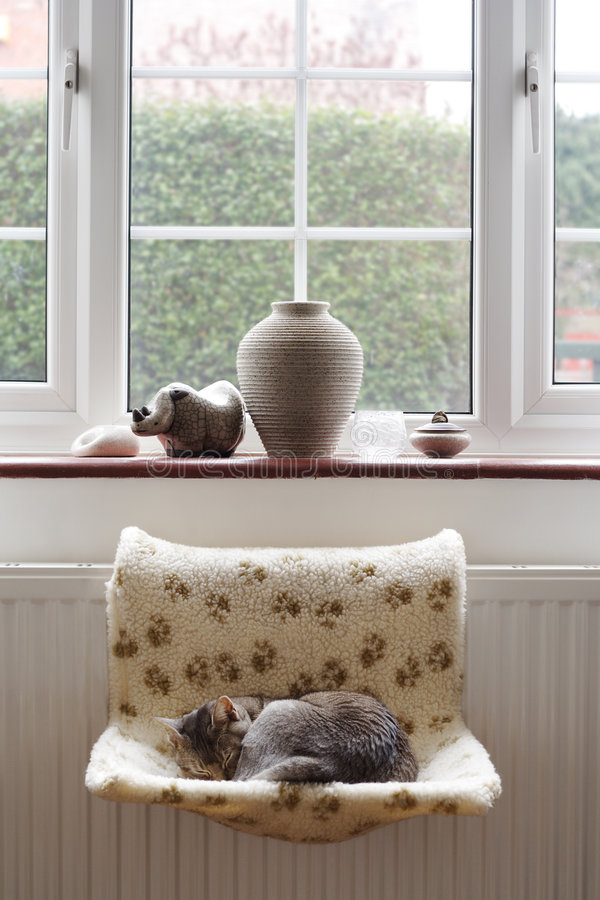 Katze, die auf Kühler döst stockbilder