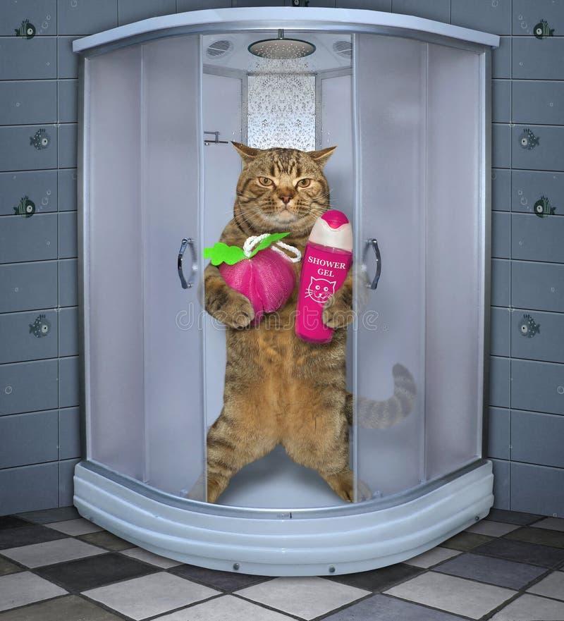 Katze, die eine Dusche nimmt lizenzfreies stockfoto