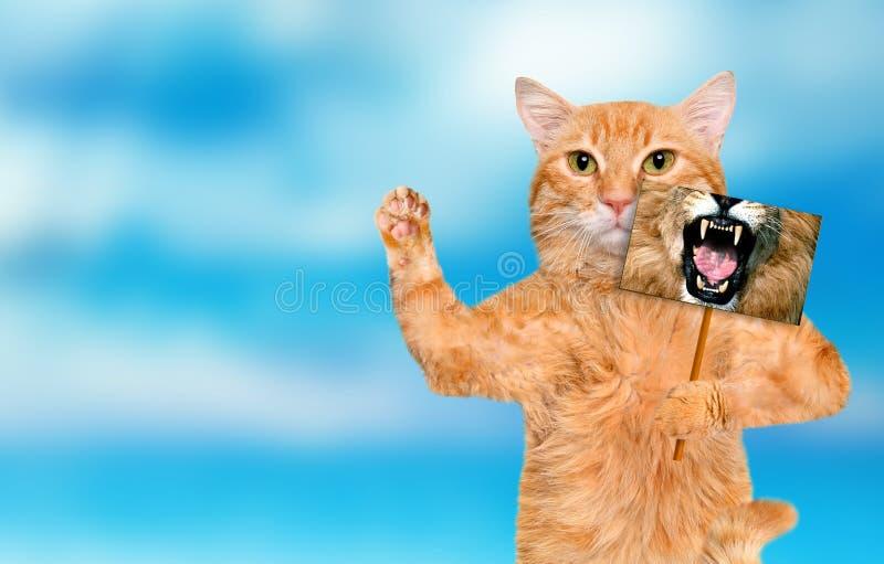 Katze, die eine Karte mit Löwemund hält stockbild