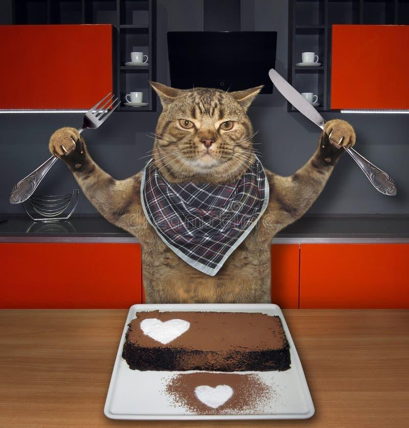 Katze, die einen Schokoladenkuchen 2 isst stockbild