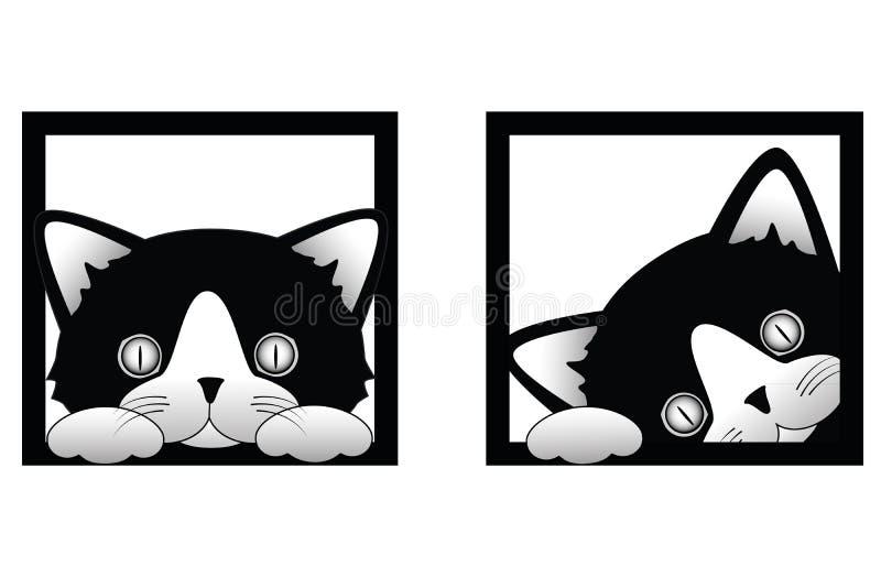 Katze, die heraus späht lizenzfreie stockfotos