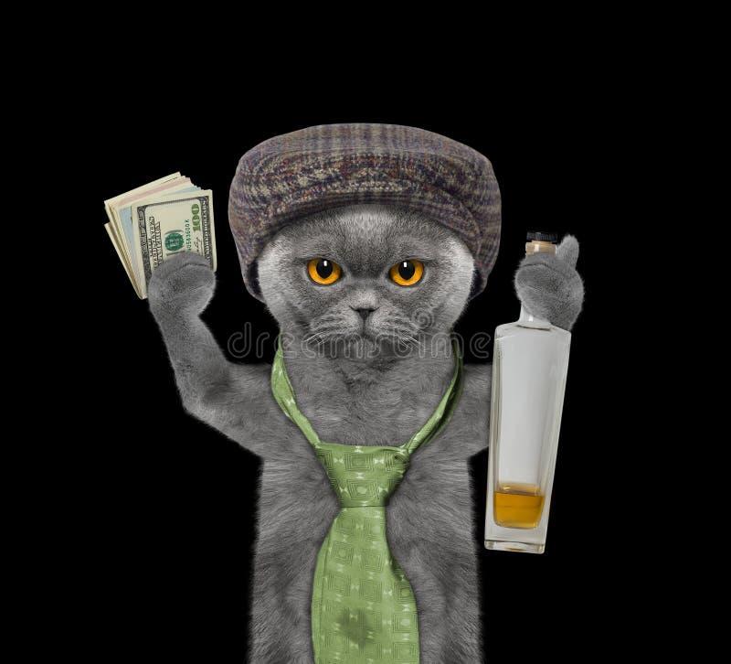 Alkohol Katze