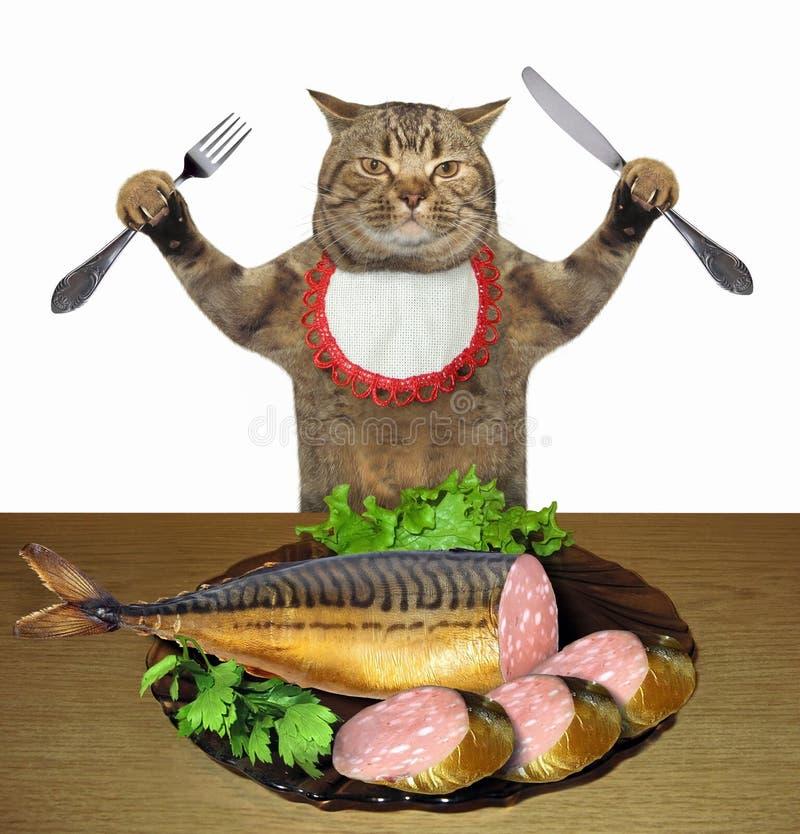 Katze, die Wurstfische isst stockfotografie