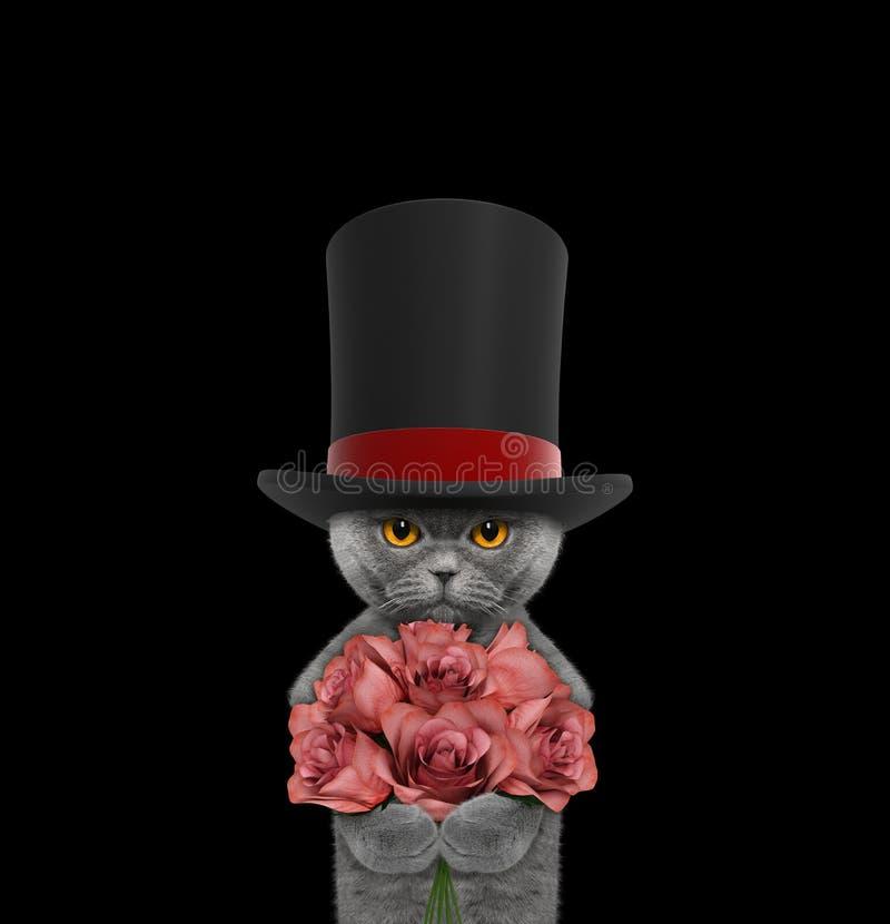 Katze in einem Zylinder des hohen Hutes mit Rosen lizenzfreies stockfoto