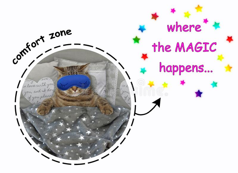 Katze in einer Schlafmaske im Bett lizenzfreie stockbilder