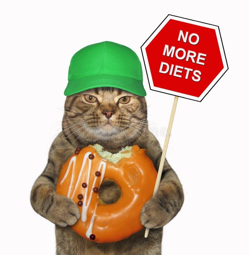 Katze hält ein lustiges Zeichen und einen orange Donut stockbild