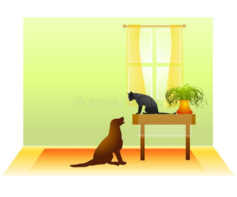 Katze-Hundeanstarrenunentschieden Stockfotos