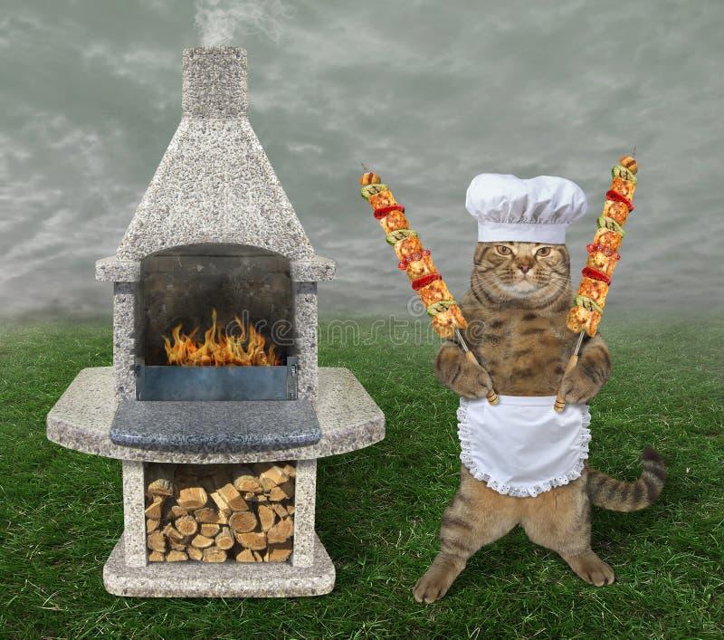 Katze kocht Fleisch auf dem bbq-Grill lizenzfreies stockfoto