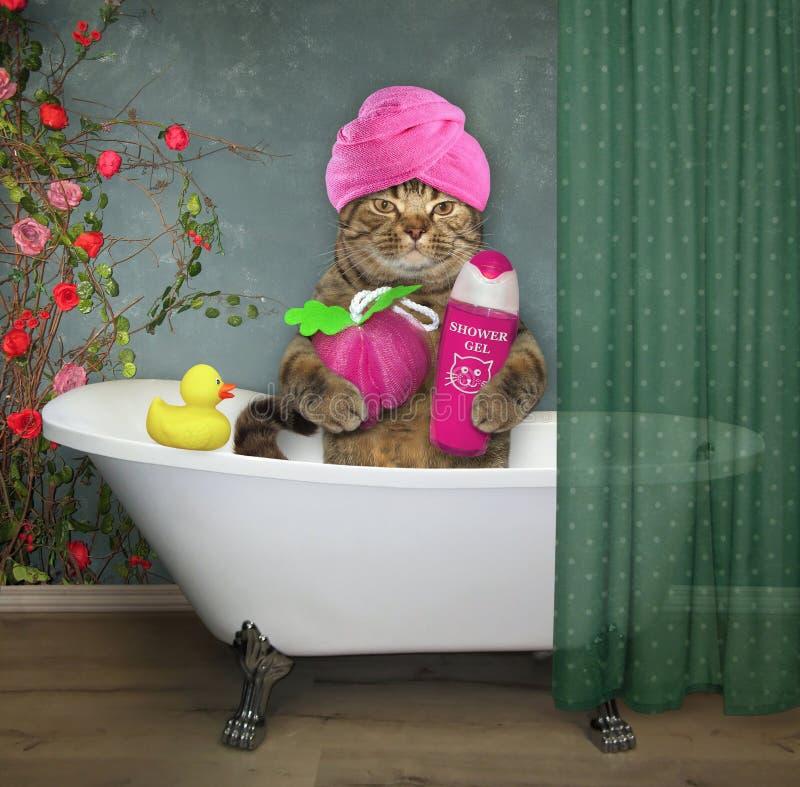Katze mit Gel und Schwamm im Badezimmer lizenzfreie stockfotos