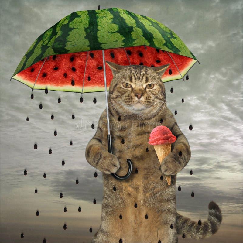 Katze mit Regenschirm 1 stockfoto