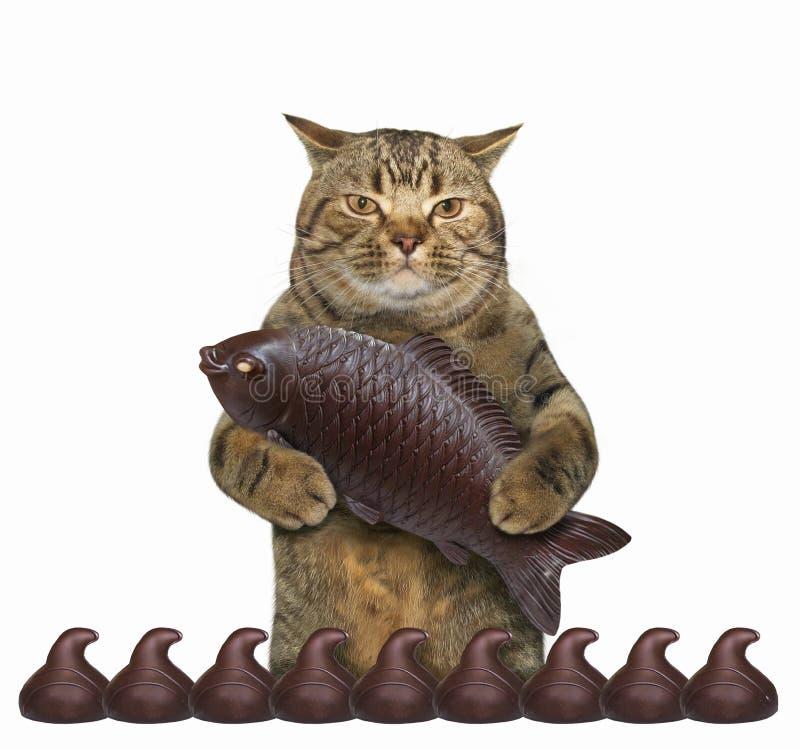 Schokolade Katze