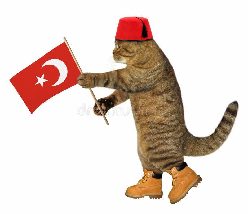 Katze mit türkischer Flagge lizenzfreie stockbilder