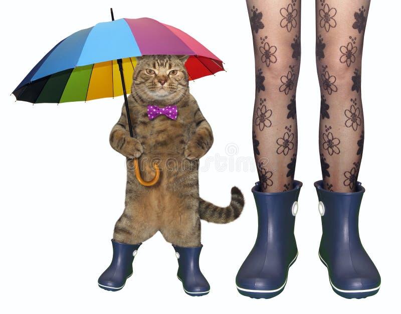 Katze und ein Mädchen in den Gummistiefeln stockbilder