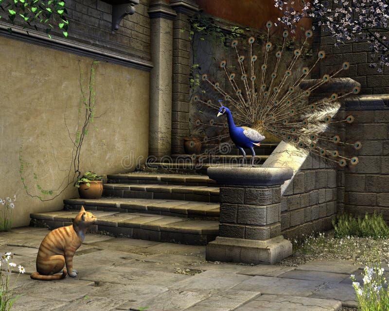 Katze und Pfau auf einer Mittelmeerstraße lizenzfreie abbildung