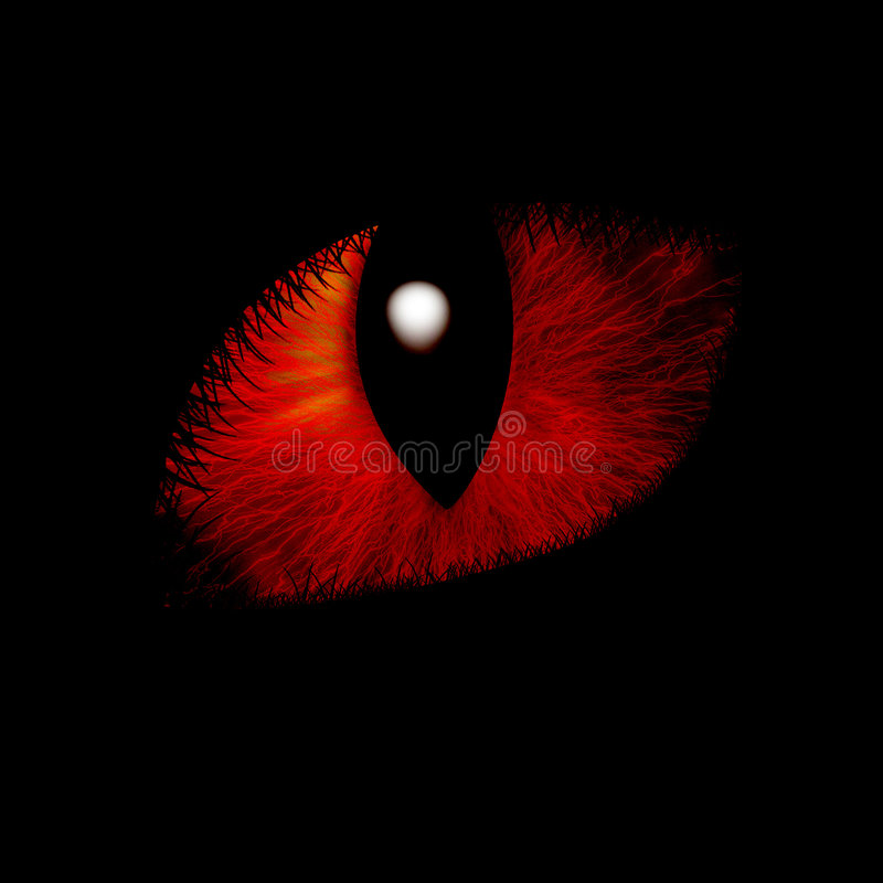 Katzenartiges Auge vektor abbildung