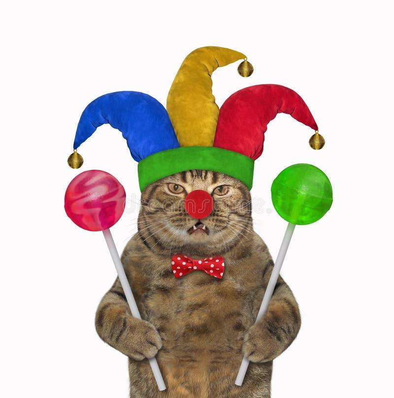 Katzenclown mit farbigen Lutschern lizenzfreie stockfotografie