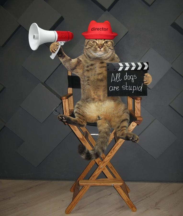 Katzendirektor auf Stuhl 3 lizenzfreies stockbild