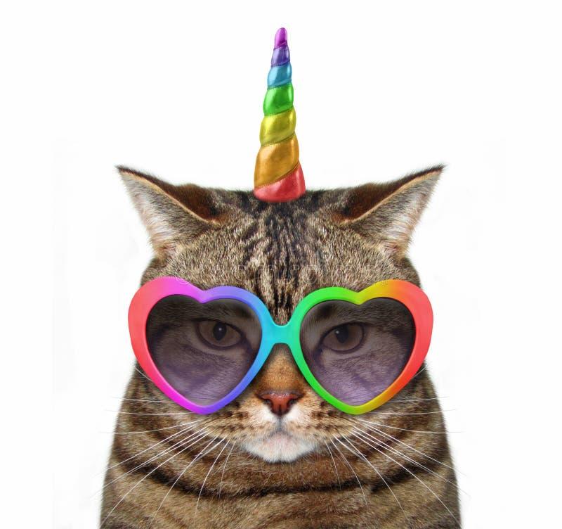 Katzeneinhorn in den Gläsern lizenzfreies stockfoto