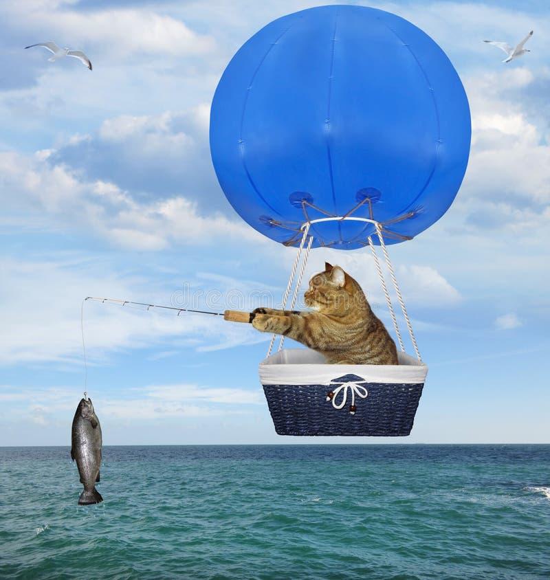 Katzenfischer in einem blauen Heißluftballon 2 lizenzfreie stockfotografie
