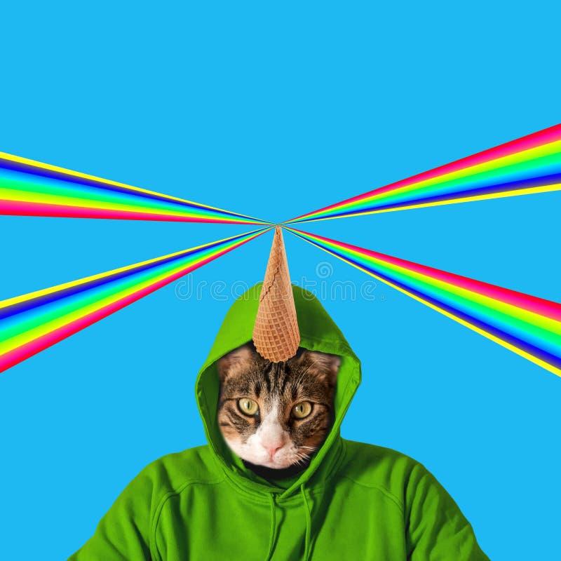 Katzenkopf mit Regenbogen, Collagenpop-arten-Konzeptentwurf Minimaler Sommerhintergrund stockfotografie