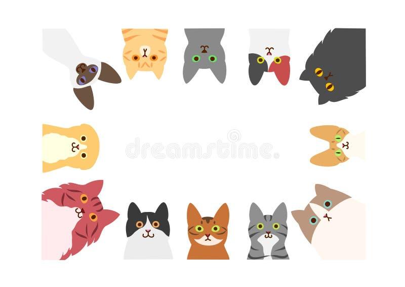 Katzenrechteckrahmen lizenzfreie abbildung
