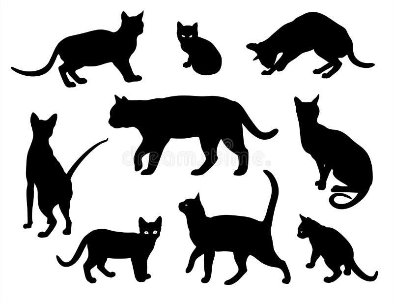 Katzenvektor-Schattenbildsatz lokalisierte weißen Hintergrund, Katzen in den verschiedenen Haltungen lizenzfreie abbildung