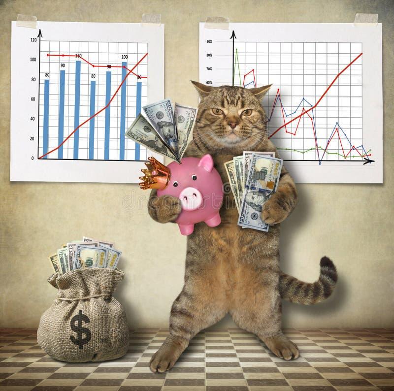 Katzenwirtschaftswissenschaftler mit einem Sparschwein stock abbildung
