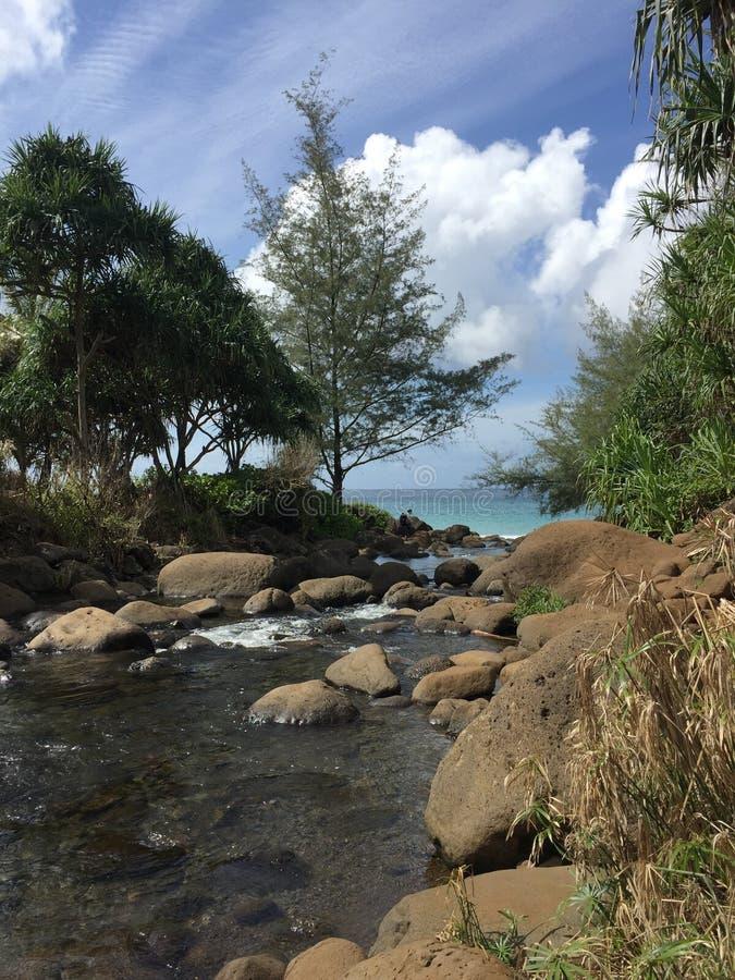 Kaua'i strumienia obrazek obrazy stock