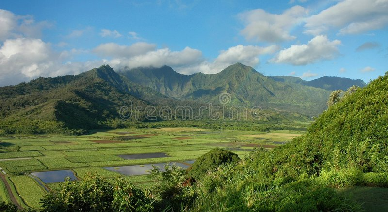 kauai hanalei κοιλάδα στοκ φωτογραφίες