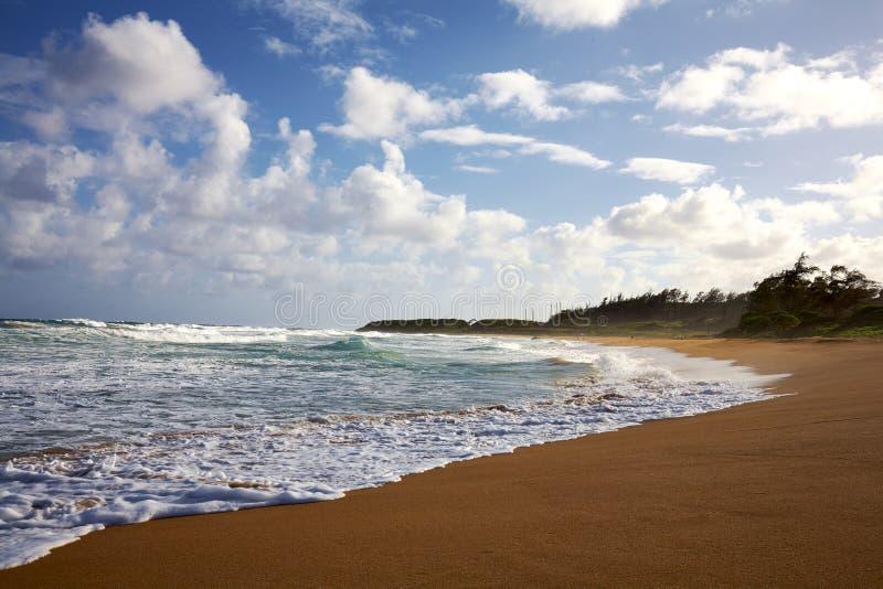 Download Kauai, Havaí Escava Um Túnel A Praia Foto de Stock - Imagem de oceano, ondas: 65579208