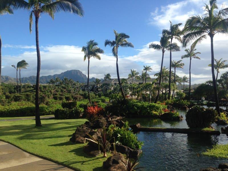 Kauai Hawai fotografia stock libera da diritti