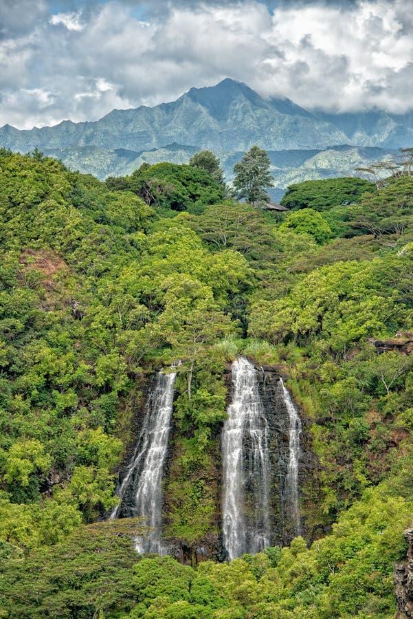 Kauai pone verde el escenario de película jurásico del parque de la opinión aérea de la montaña imagen de archivo libre de regalías