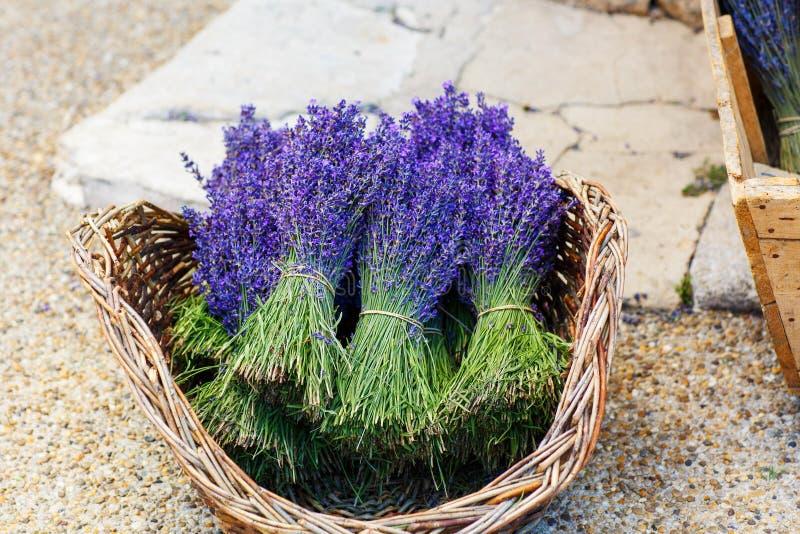 kaufen sie in provence verzierte mit lavendel und weinlesesachen stockbild bild von sommer. Black Bedroom Furniture Sets. Home Design Ideas