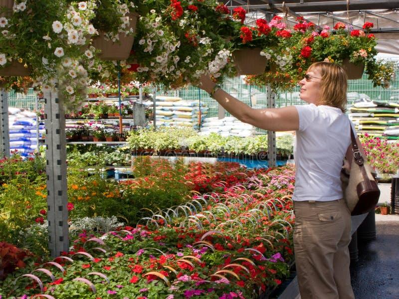 Kaufende Blumen stockbilder
