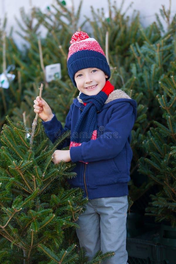 Kaufender Weihnachtsbaum stockfotografie