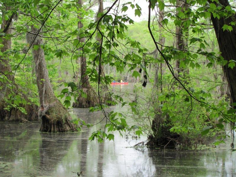 Kaufmanns-Mill State Park-Sumpf mit rotem Kanu stockfotos