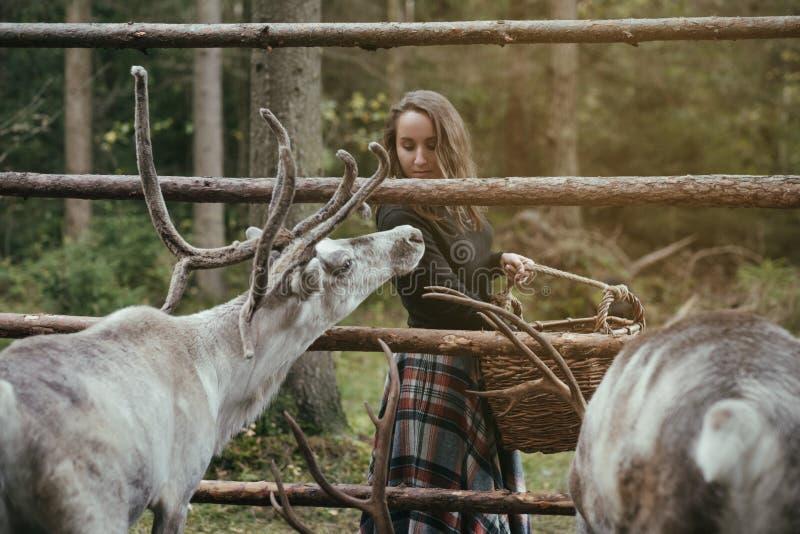 Kaukasisch mooi vrouwen voedend rendier in ecolandbouwbedrijf royalty-vrije stock foto