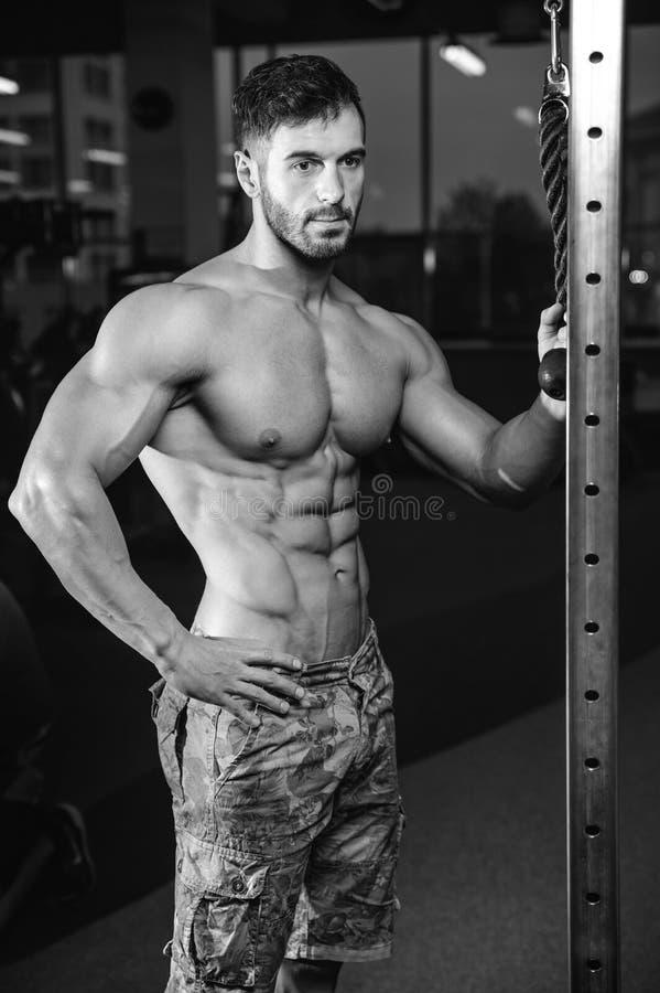 Kaukasisch sexy geschiktheidsmodel in gymnastiek dichte omhooggaande abs stock afbeeldingen